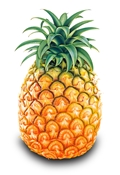 10ml Pineapple Flavor Pineapple E-liquid, Pineapple vapor, E-Liquid, Pineapple