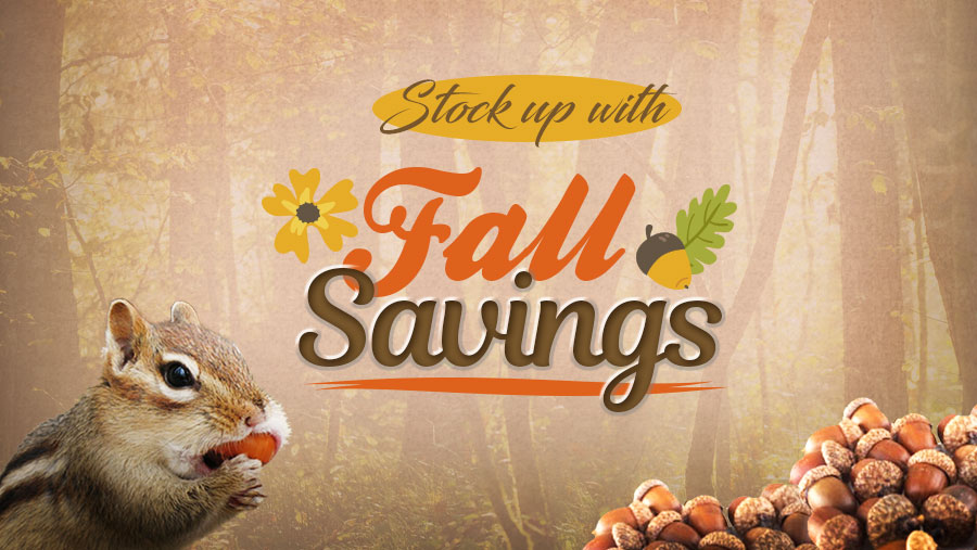 NicVape E-Liquid and DIY Supplies - Fall Savings